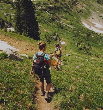 Hikers walking down a hill